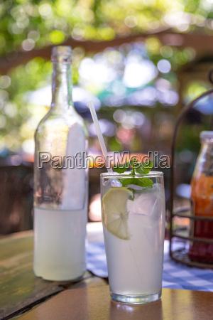 bere freddo foglie estate ristoro limonata
