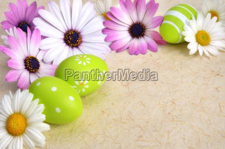 fiore fiori pasqua primavera uova di