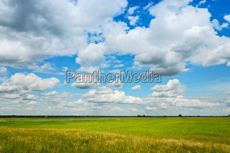 nuvola prato senza nuvole nuvole