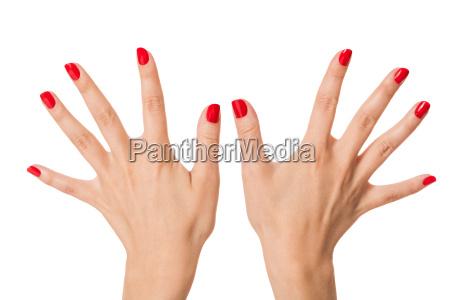 mani delle donne isolate con belle