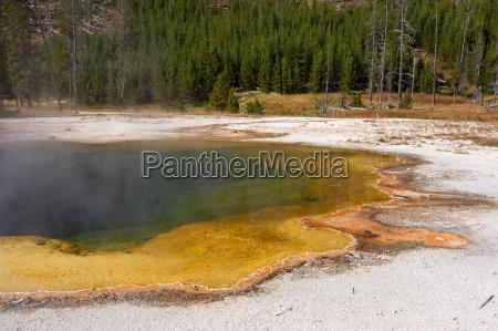 parco nazionale yellowstone stati uniti