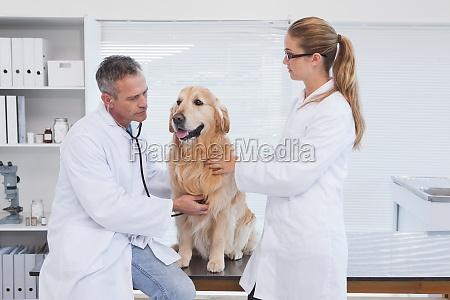 dottore medico donna ufficio risata sorrisi