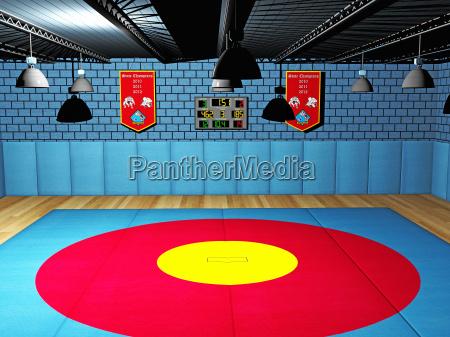 competizione sport da combattimento arena palazzetto