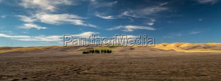 marrone estate distanza larghezza estensione campi