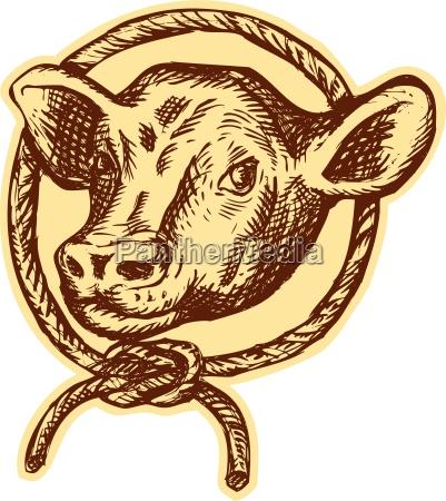 rilasciato grafica animale toro annata illustrazione