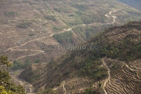 le colline terrazzate pesantemente del basso