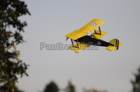 a biplane flies along the forest
