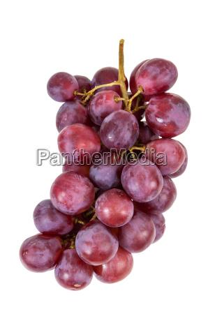 cibo salute vitamine dolce rilasciato colore