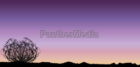 arte deserto grafico tramonto alba sera