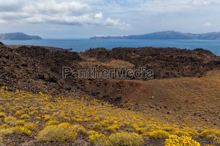 cratere vegetazione vulcano