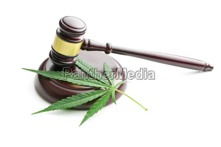 foglia di cannabis e giudice martelletto