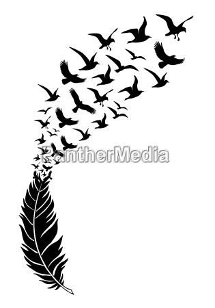 piuma nera con uccelli in volo