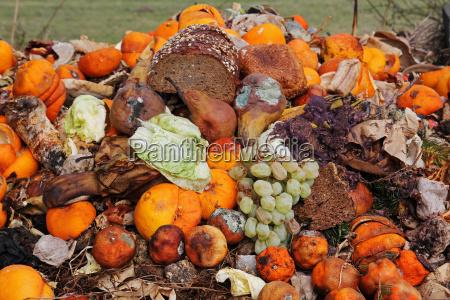 frutta e pane scartati sulla spazzatura
