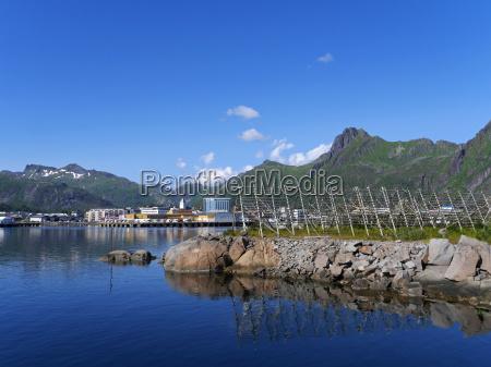 stoccafisso norvegia del nord
