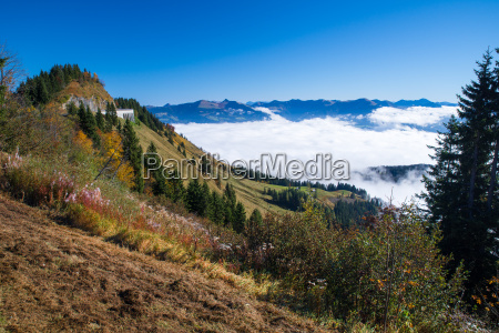 ross campo panorama strada a berchtesgaden