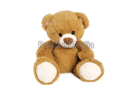 orso giocattolo teddy orsacchiotto bambino