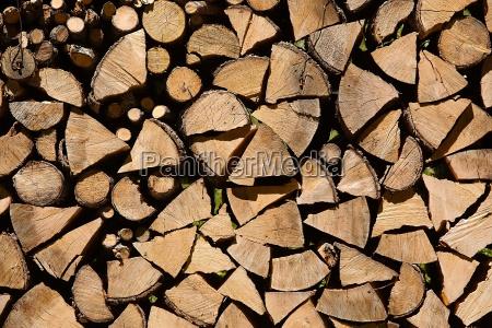 industria legno boscaiolo cavalletto di legno
