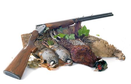 giochi di caccia