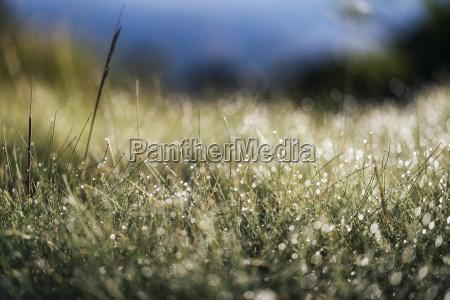 paesaggio sulle montagne della sierra nevada