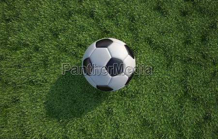 chiudere sport dello sport gioco giocato