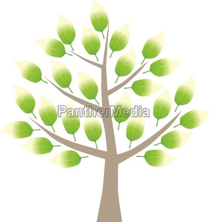 albero grafico foglie primavera illustrazione pittogramma