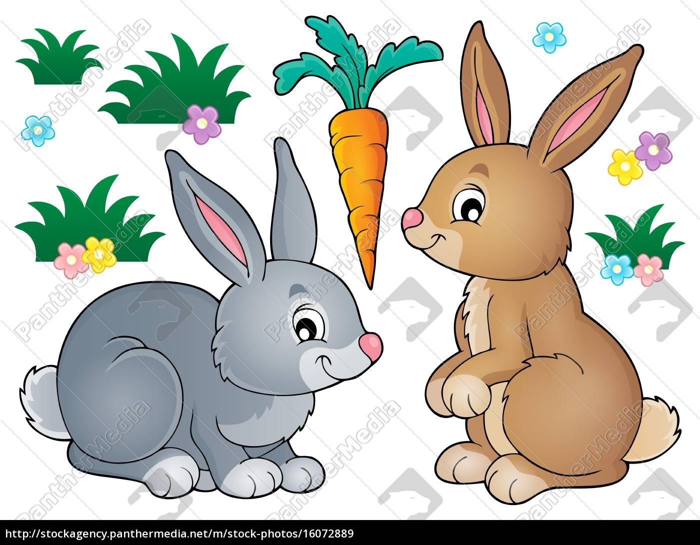 immagine, dell'argomento, coniglio, 1 - 16072889