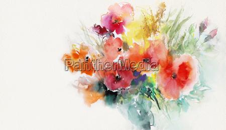 carta papaveri dipinto