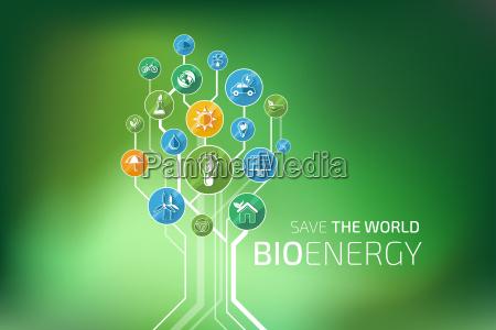 ecologia infografica bioenergia