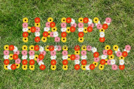 buon compleanno anniversario di erba prato