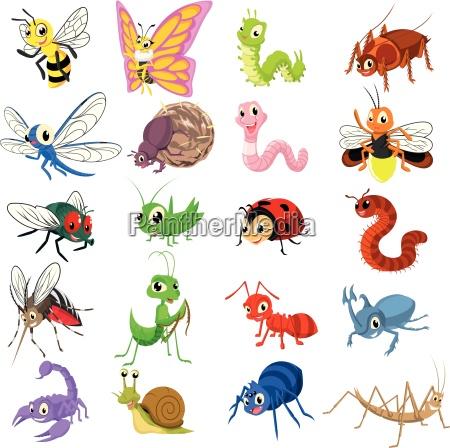 animale insetto carattere cimice raccolta parure