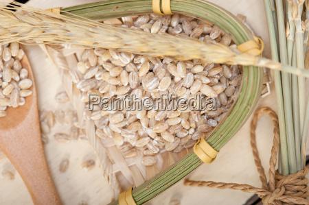 cibo primo piano close up legno