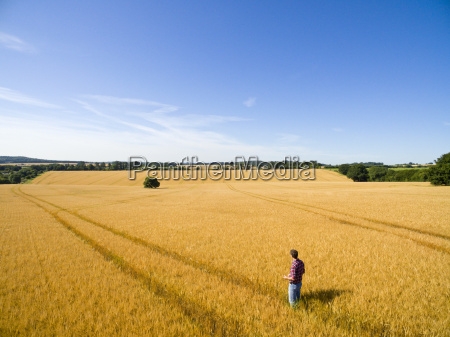 aerial view of farmer standing in