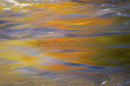 fall leaves reflect onto water in
