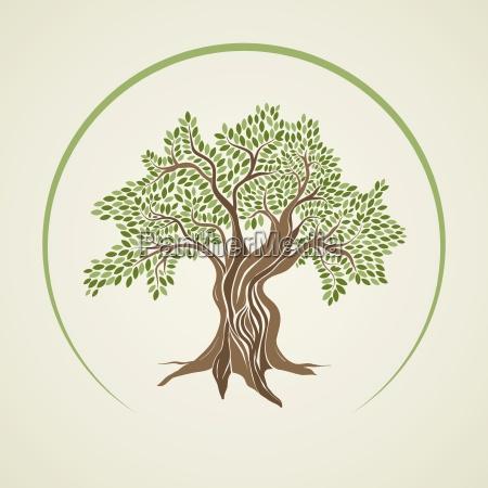 progettazione concetto modello progetto bozza albero