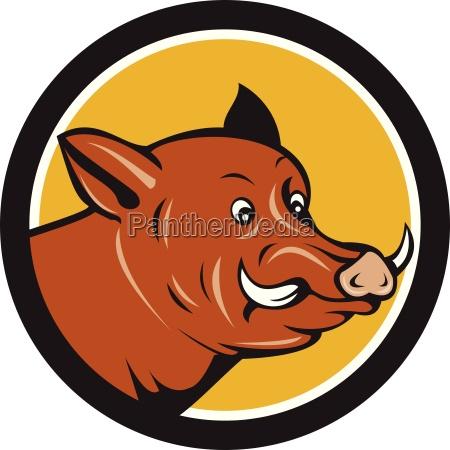 cartone animato wild boar razorback head