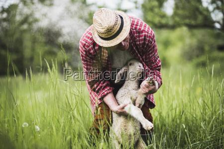 pastore che esamina lagnello sul pascolo