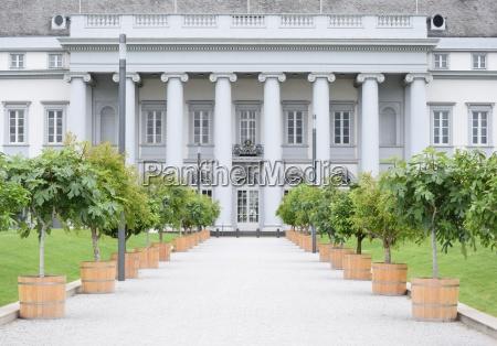 storico albero alberi colonne ghiaia ciottolato