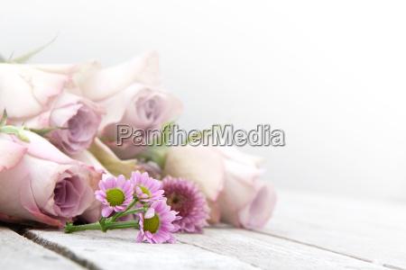 natura morta con rose pastello e
