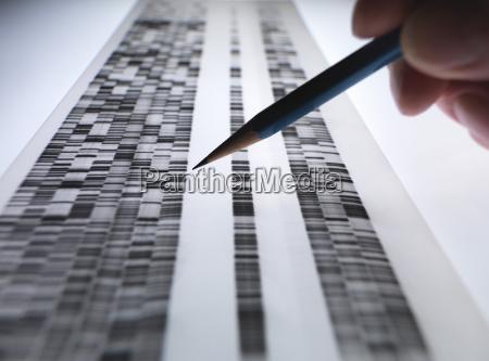 gel scientist dna visualizzazione usato in