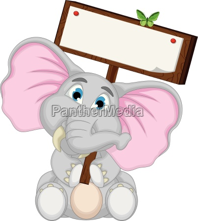 animale mammifero farfalla elefante vuoto inabitato