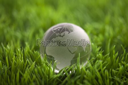 globo di cristallo su erba verde