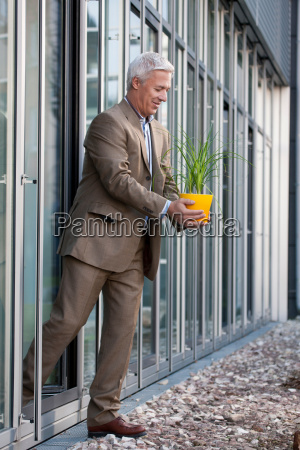 putting a plant into the sunlight