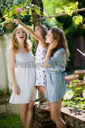 three, girls, in, the, green, garden - 18206530