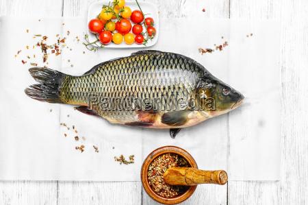 pescare cucina cucinare crudo frutti di