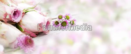 rose da sposa