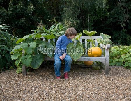boy, (8-9), looking, at, large, pumpkin - 18352458