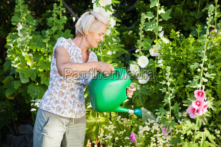 mature woman watering plants in garden