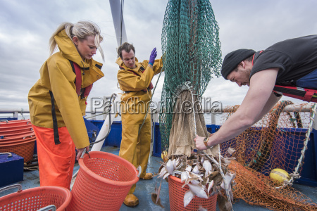 research scientists and fishermen bring in