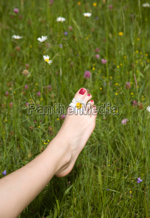 womans foot in grass with flower