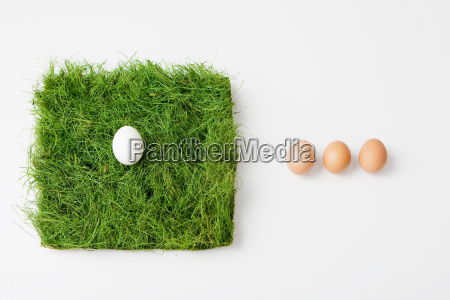eggs with patch of grass